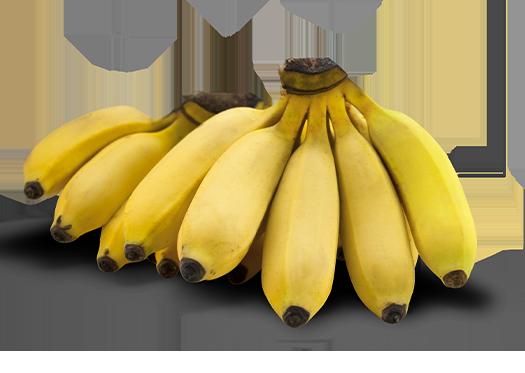 Manzano Bananas Del Monte