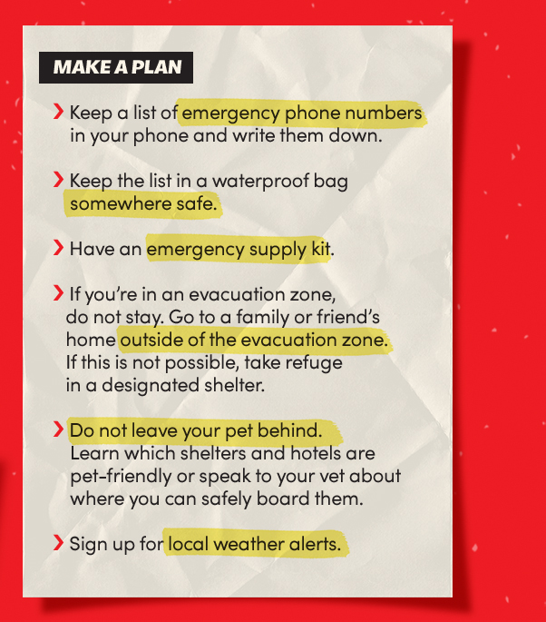 Make a plan: